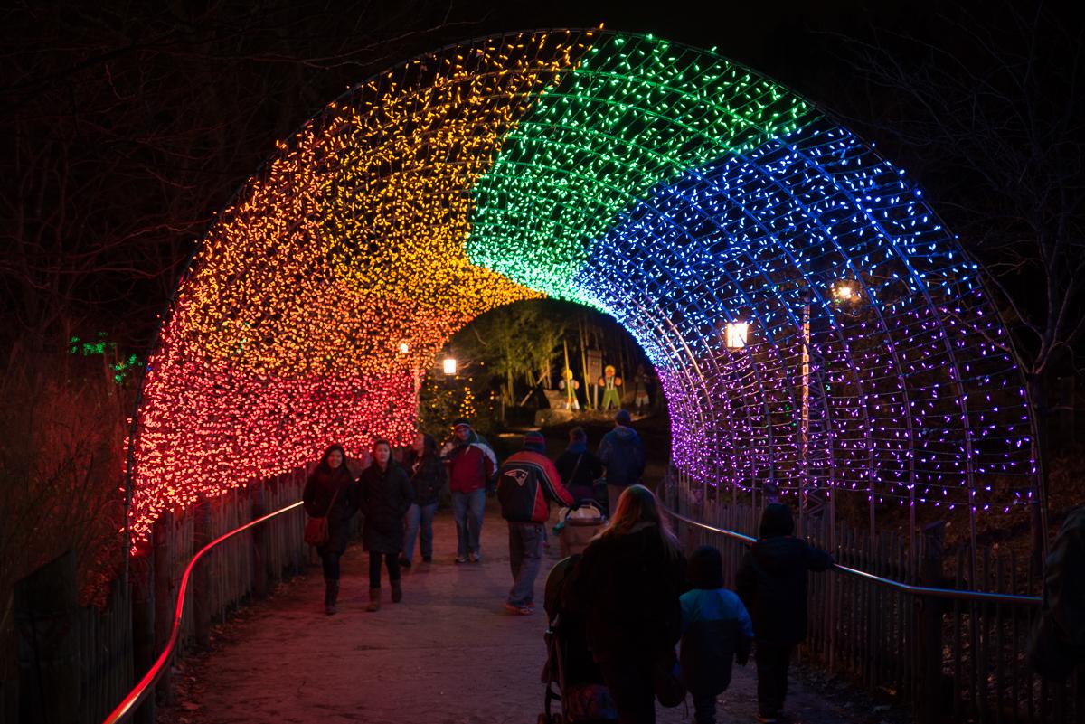 Cincinnati Hours Zoo Lights