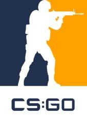 Counter-Strike: Global Offensive (CS: GO)