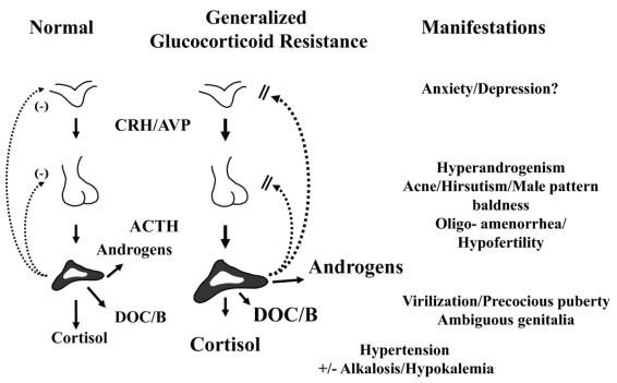 http://bmcmedicine.biomedcentral.com/articles/10.1186/1741-7015-9-27