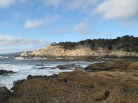 Point Lobos SR