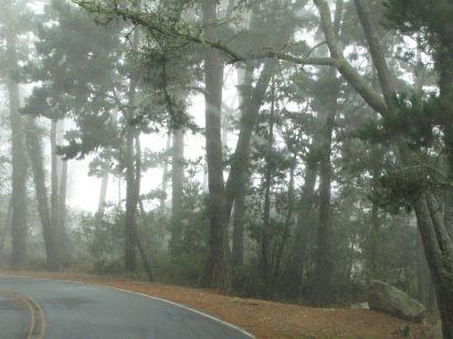 17-Mile Drive