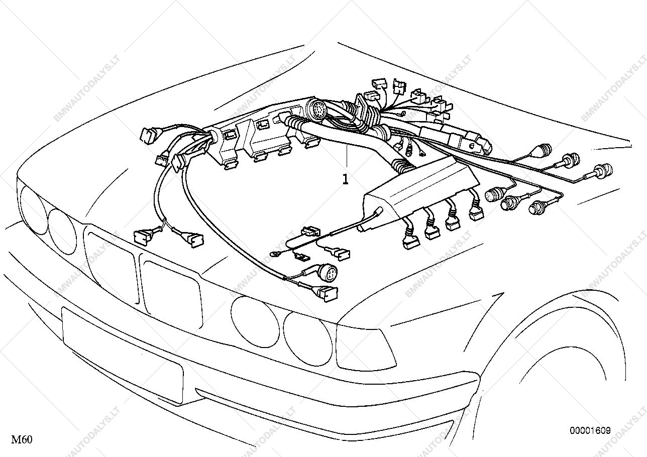 Bmw M62 Wiring Diagram