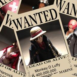 an one piece style pirate wanted poster