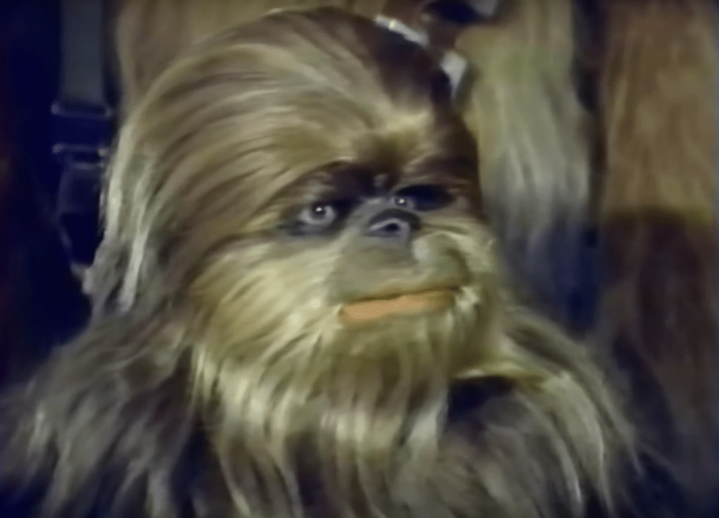 Star Family Chewbacca Special Wars Holiday
