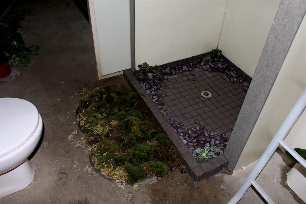 Live Moss Shower Carpet   Carpet Vidalondon. Moss Bath Mat  Bathroom Mat  Bathroom Mat  Make A Moss Bath Mat Hgtv