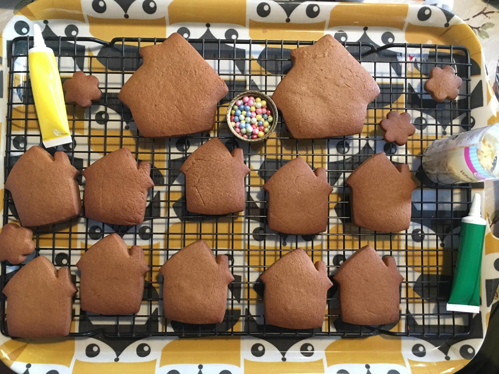 ready to decorate gingerbread biscuits