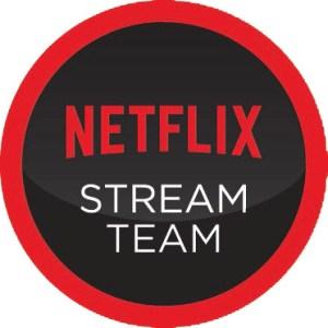 Netflix Stream Team logo