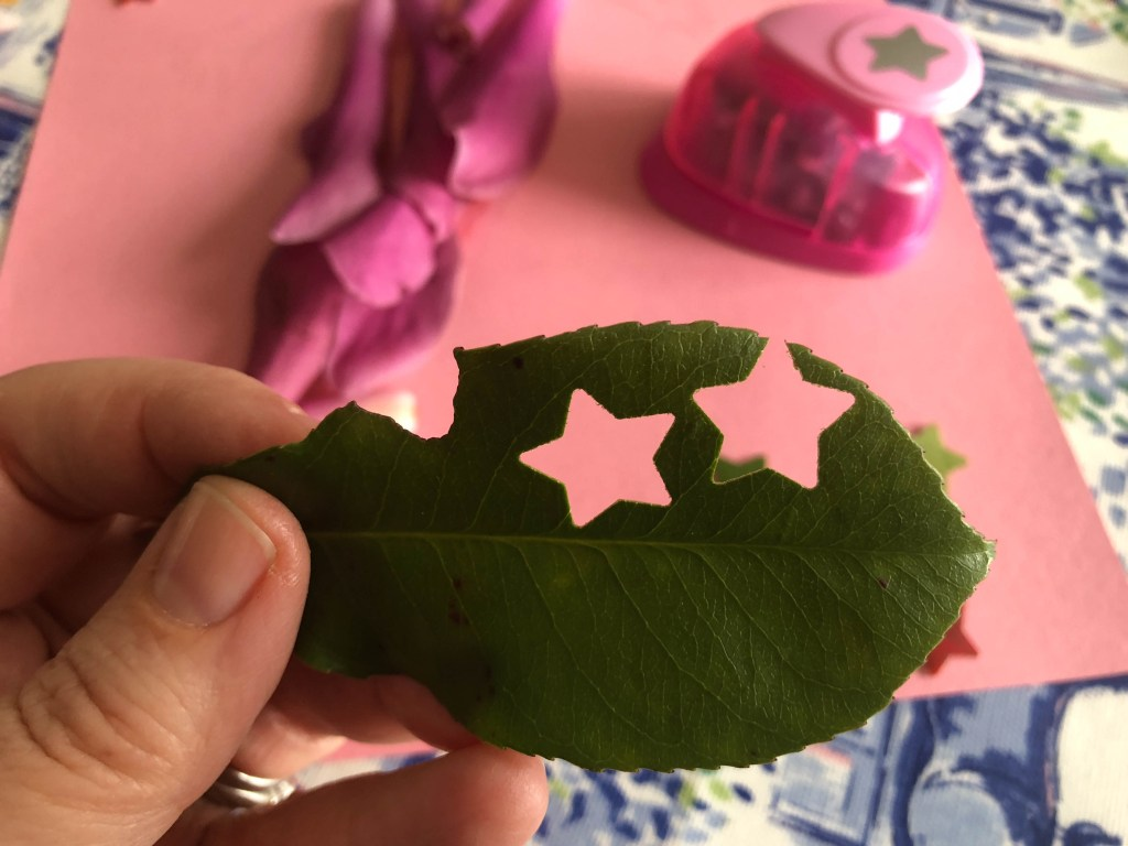 crafting with leaves