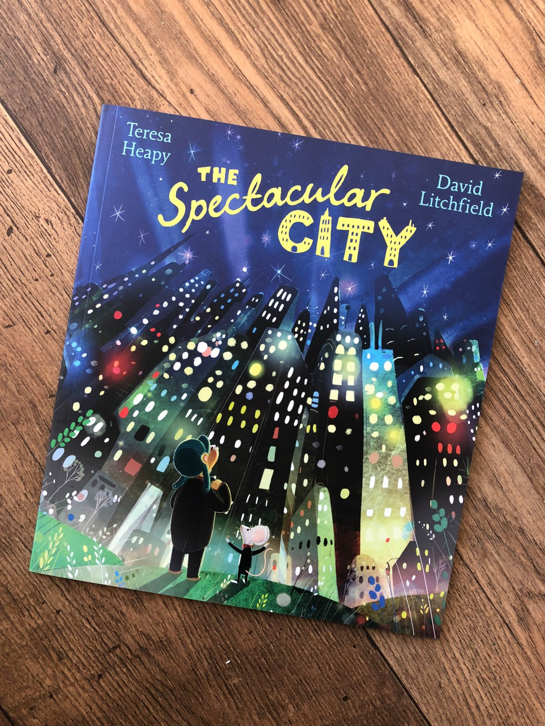 The Spectacular City by Teresa Heapy
