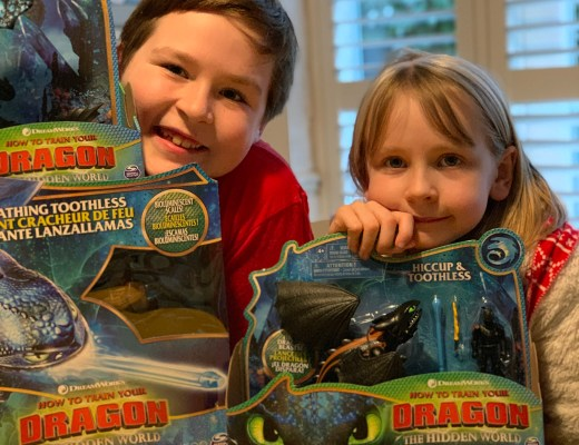 How to Train Your Dragon: The HiddenWorld toys