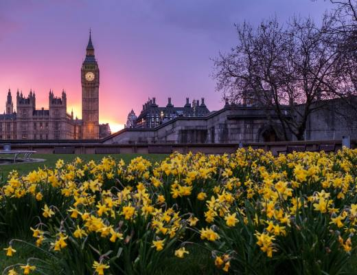 7 Easy Ways to Live Green in London
