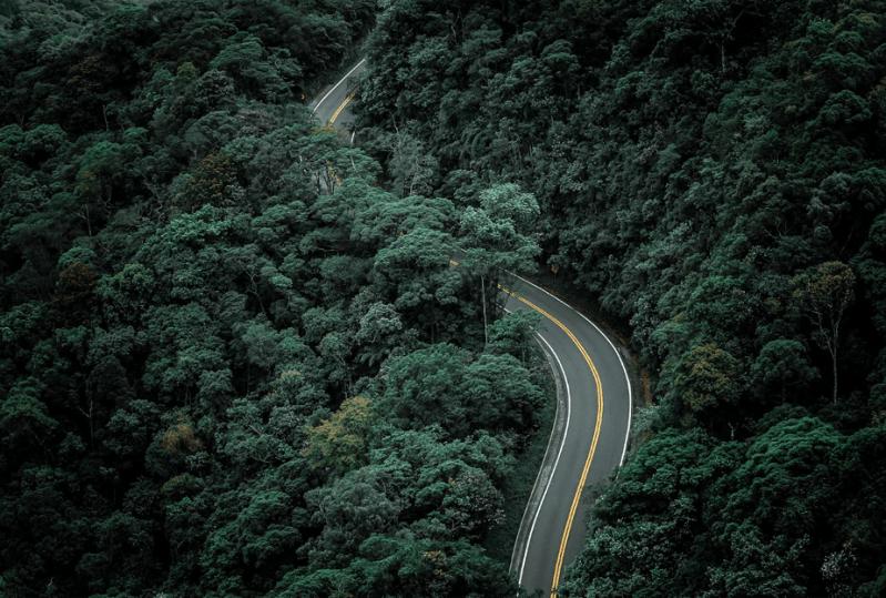 drone foto van een gebogen weg die door een bos loopt