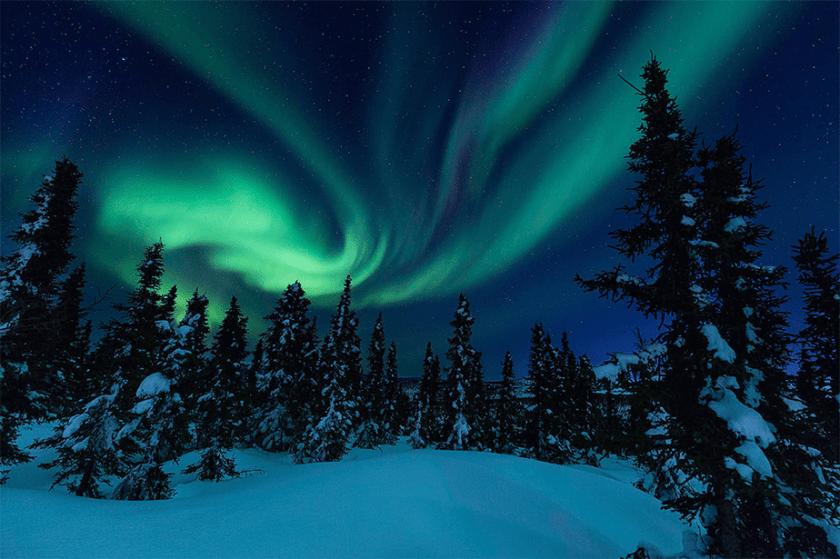 alaska noorderlicht boven bos en sneeuw