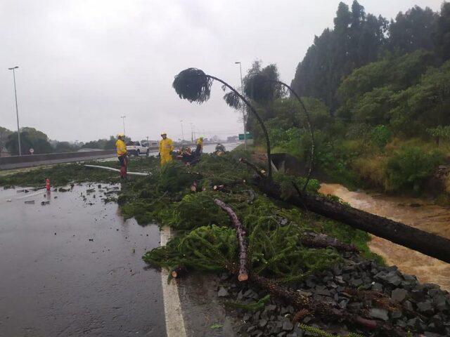 Ciclone Bomba Santa Catarina