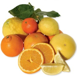 How to refresh the cold citrus?