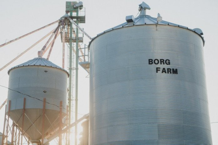 Borg Farms grain storage