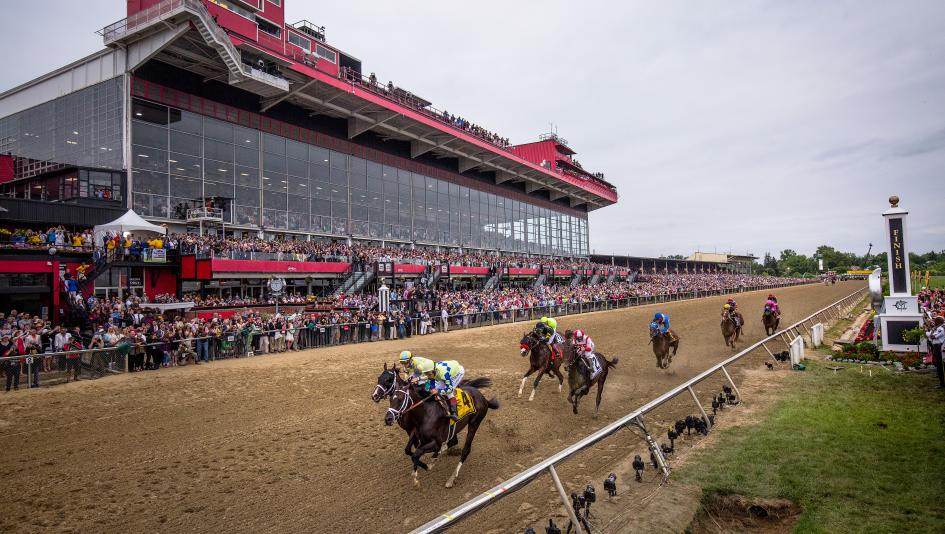 2019 Preakness Stakes At A Glance Americas Best Racing