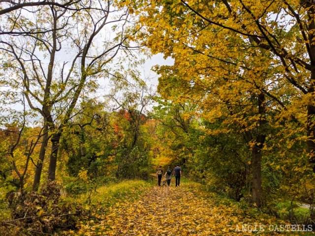 Que hacer en Tarrytown y Sleepy Hollow - El Old Croton Aqueduct Trail
