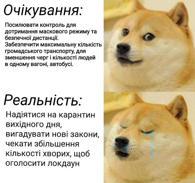 Навіть собачка засумувала: нові яскраві фотожаби на карантин і коронавірус в Україні, АБЗАЦ