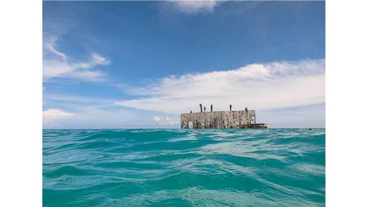 افتتاح أول متحف شبه مغمور في العالم في المالديف - CNN Arabic
