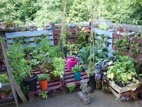 10 Ides De Rcupration Au Jardin