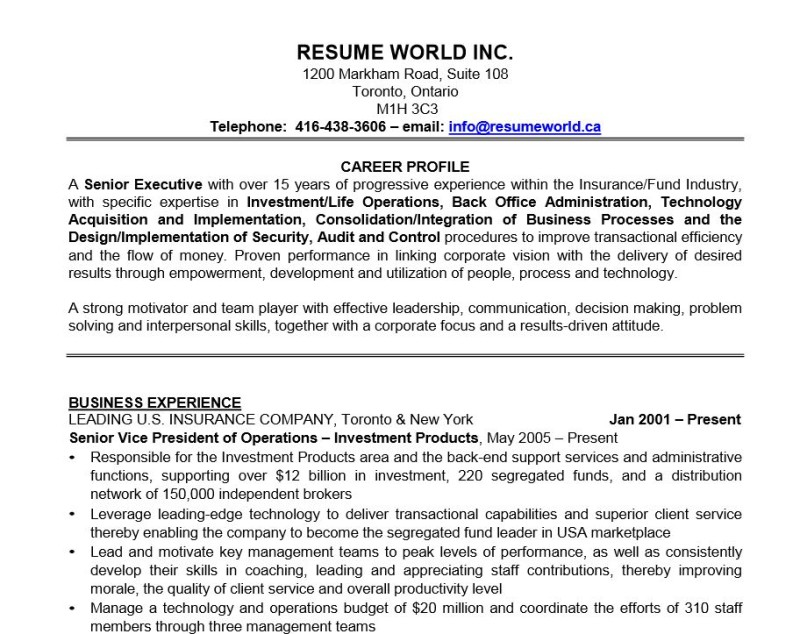 Best Resumes For Executives. Executive Resume Samples Template