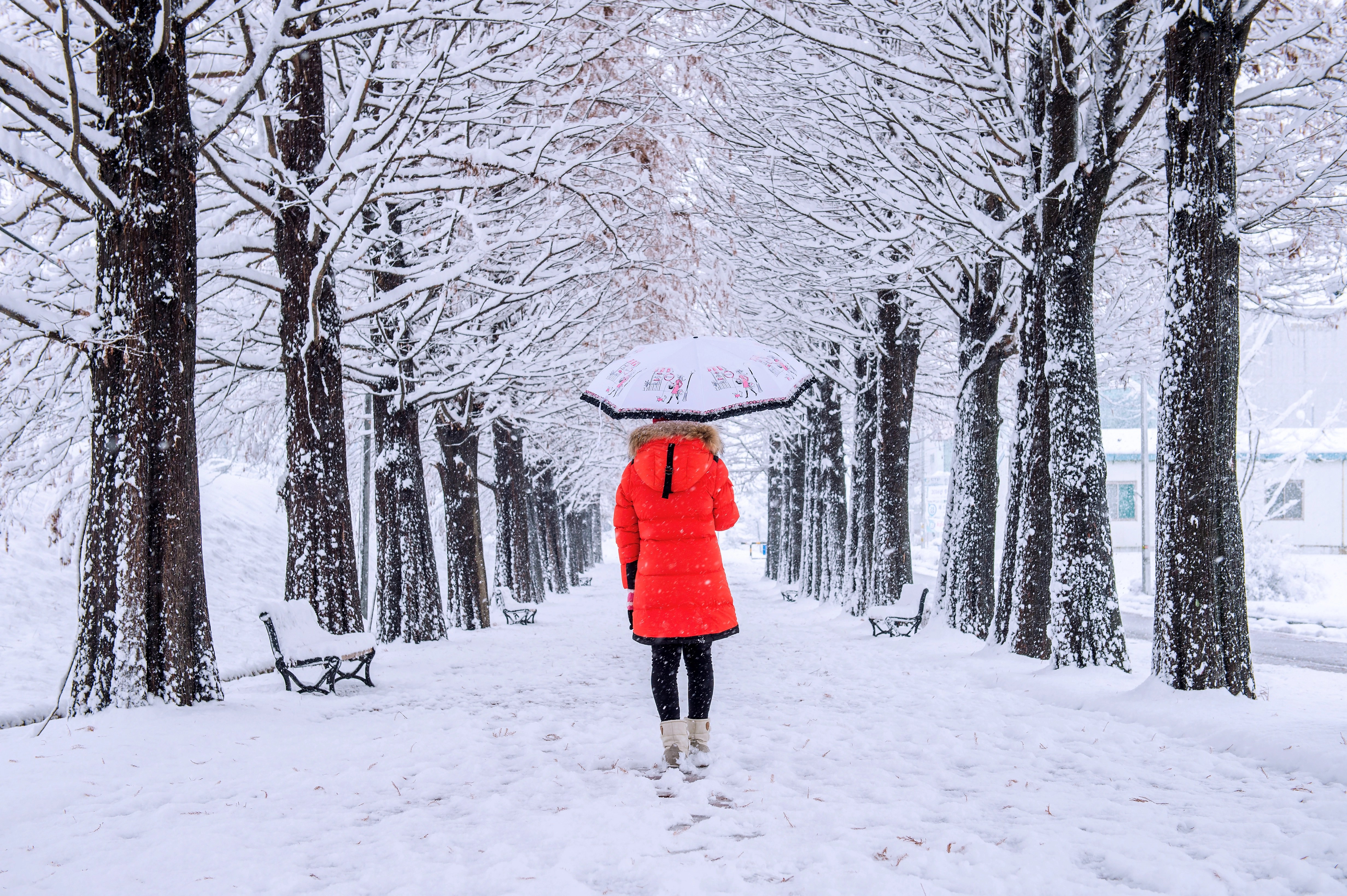 7 Tips For Taking Photographs In The Snow BampH Explora