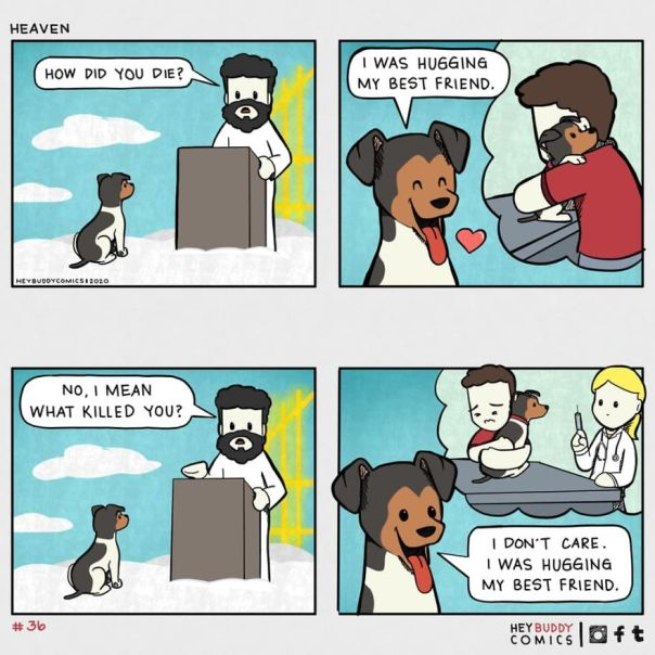 I Create Comics About My Dog That Most Dog Owners Will Relate To (11 New Pics)