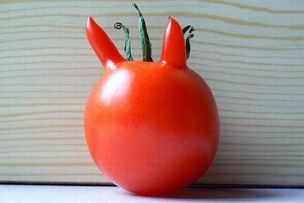 funny-shaped-vegetables-fruits-5