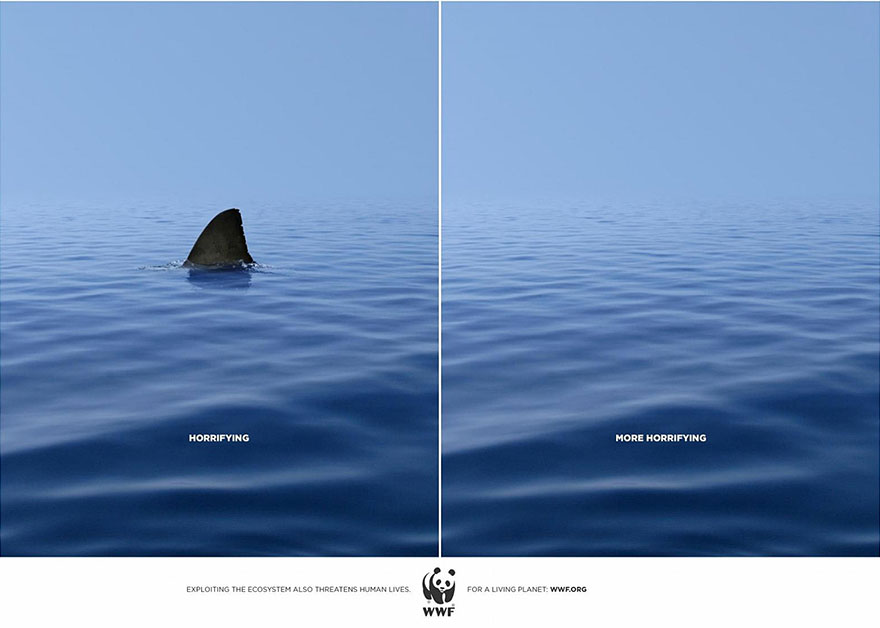 public-social-ads-animals-118