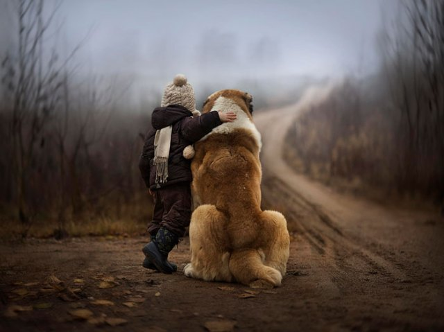 cute-big-dogs-and-babies-20