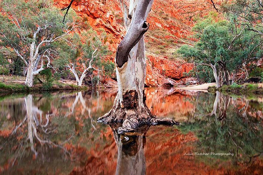 landscape-nature-photography-australia-julie-fletcher-4