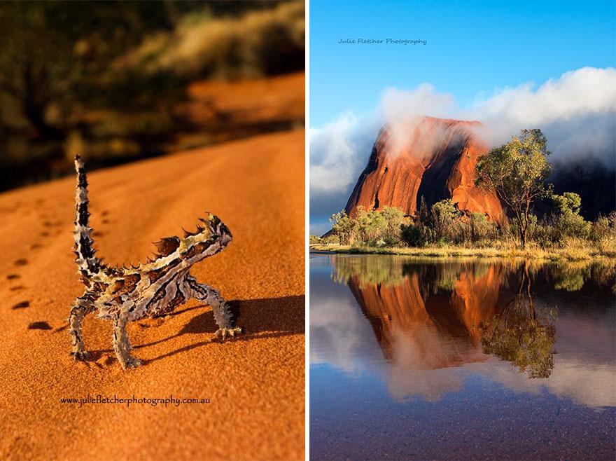 landscape-nature-photography-australia-julie-fletcher-9
