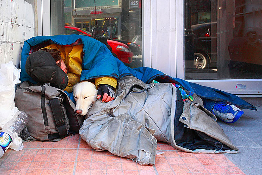 homeless-dogs-and-owners-2
