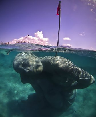 Image result for 18 Foot underwater statue