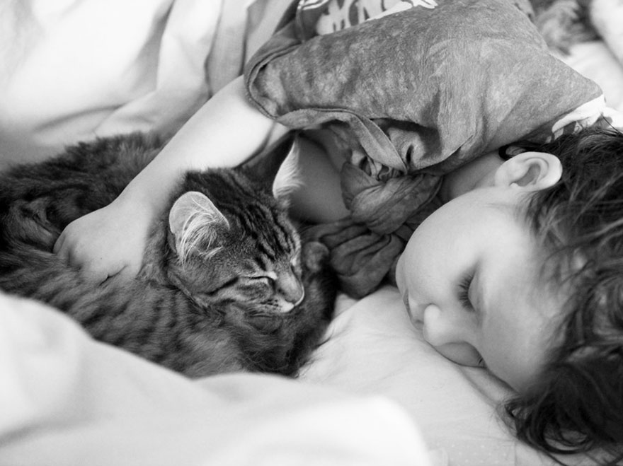 https://i2.wp.com/static.boredpanda.com/blog/wp-content/uploads/2014/10/thula-therapy-cat-autistic-artist-iris-grace-6.jpg