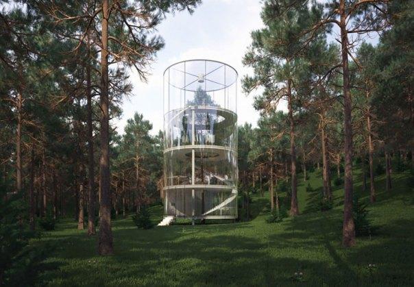 House Built Around A Tree