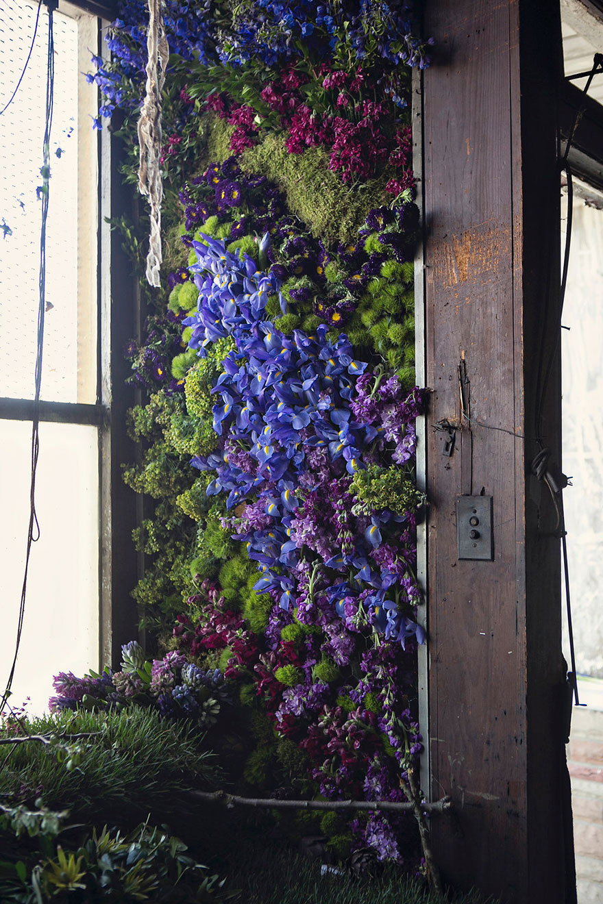 abandoned-flower-garden-house-building-detroit-lisa-waud-2