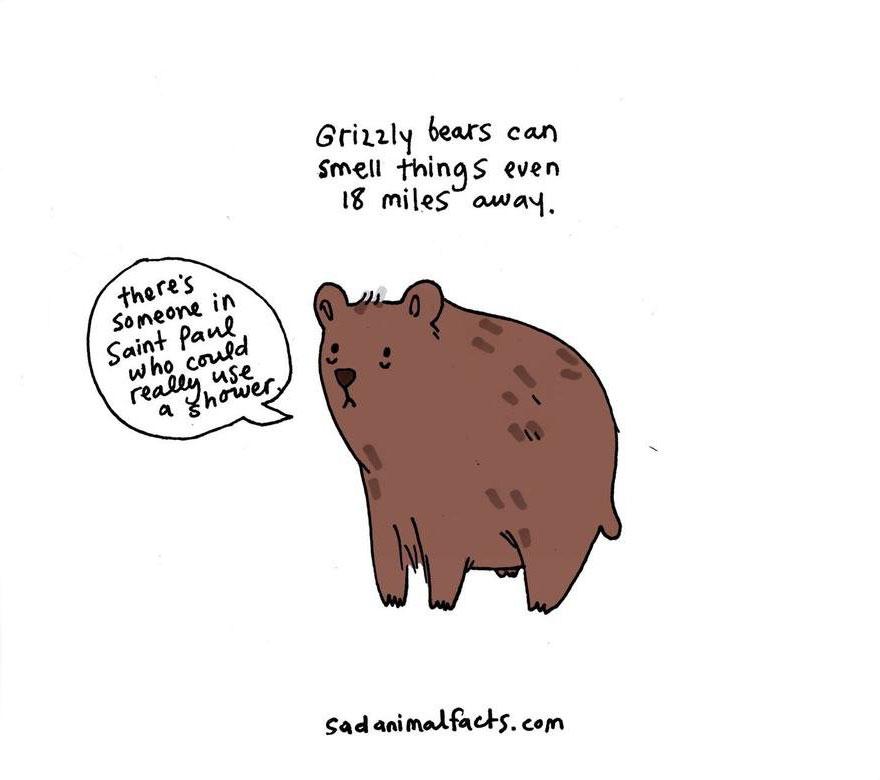 Sad Animal