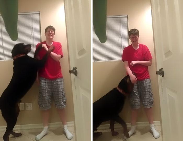 dog-asperger-meltdown-intervention-danielle-jacobs-3