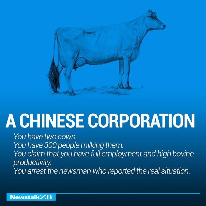 Two Cows Explain Economics Better Than Any Class Bored Panda