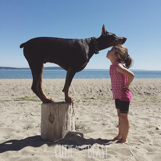 cutie-and-the-beast-dog-girl-seana-doberman-43