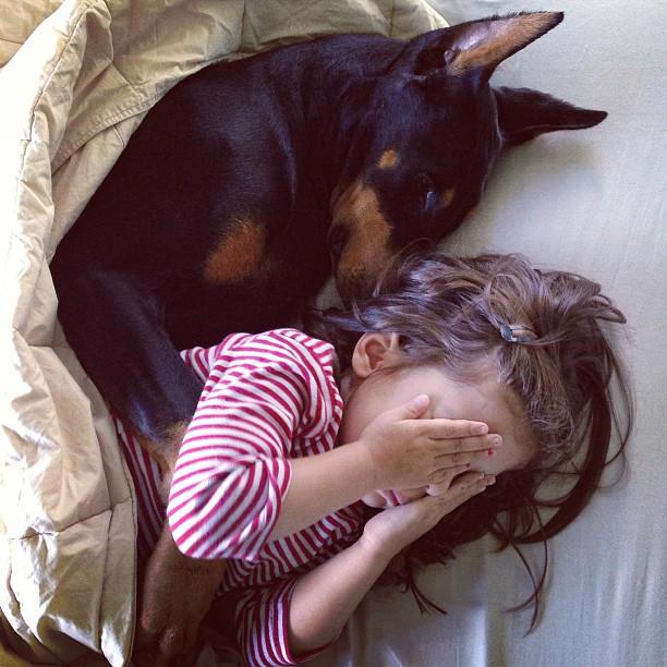 cutie-and-the-beast-dog-girl-seana-doberman-55