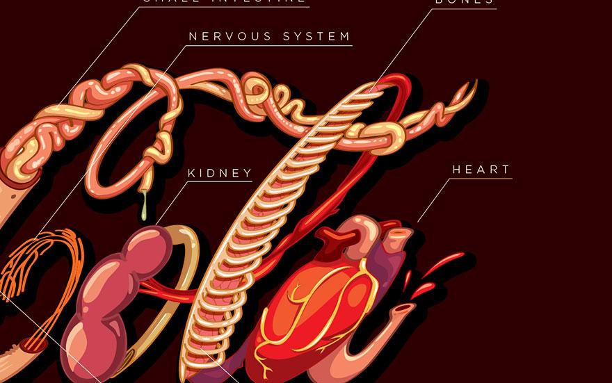 coca-cola-harm-organs-logo-fabio-pantoja-4