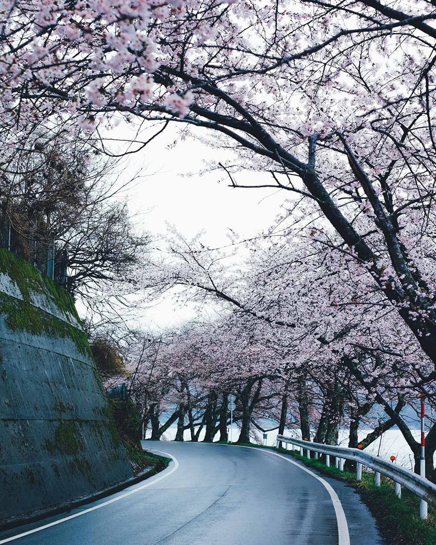 everyday-street-photography-takashi-yasui-japan-7