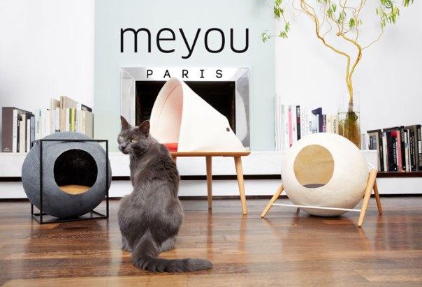 cat-cocoon-meyou-sanchez- gadenne-10