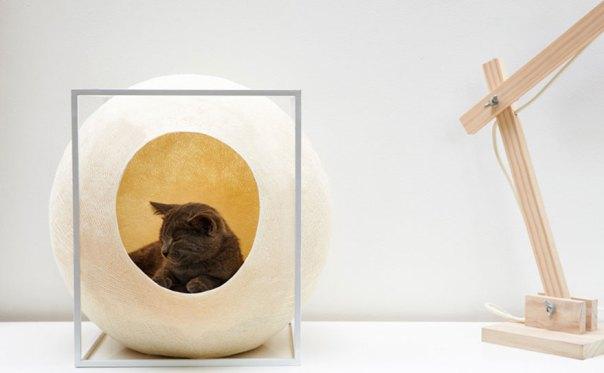cat-cocoon-meyou-sanchez- gadenne-5