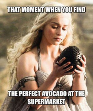 what is an avocado