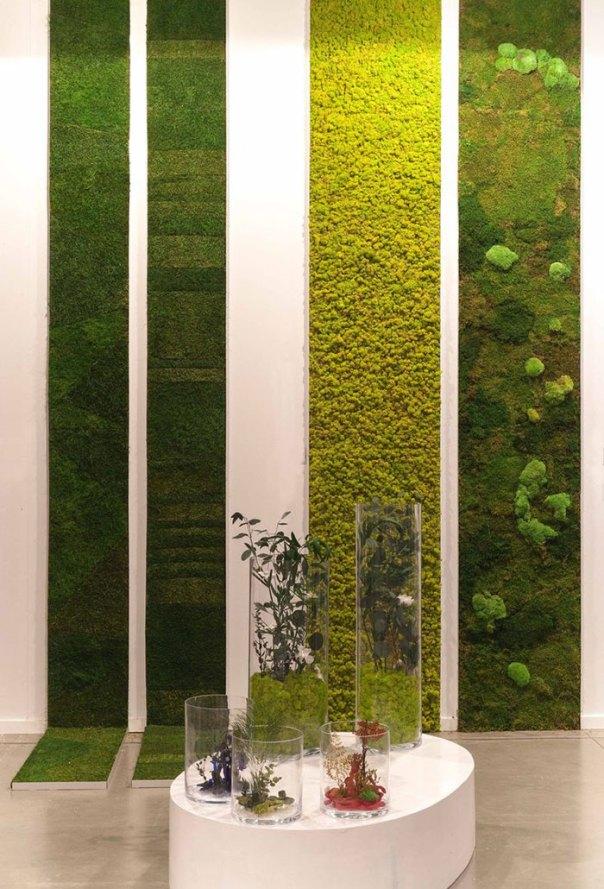 Vertical Moss Gardens