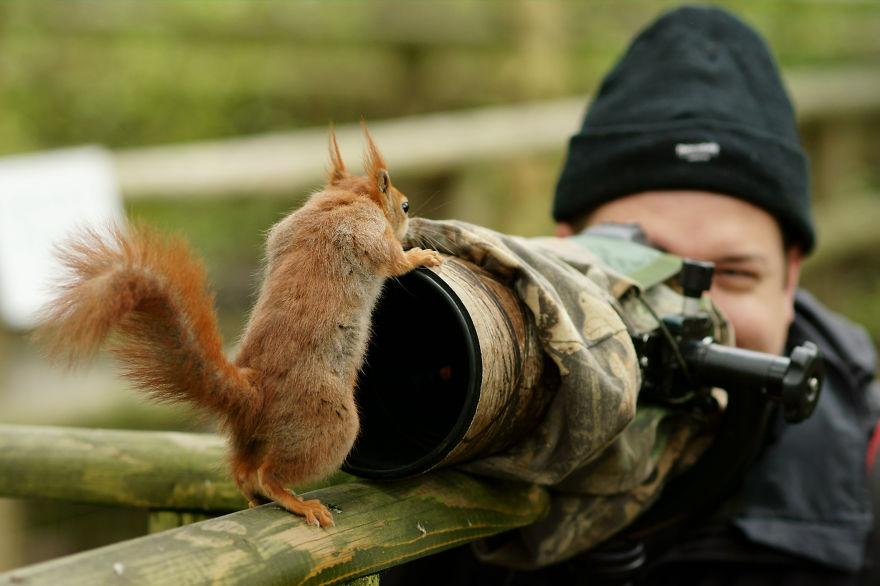 Nature Photographer